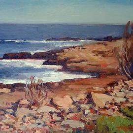 Dianne Panarelli Miller - Calm Coast