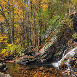 Bill  Wakeley - Campbell Falls Autumn