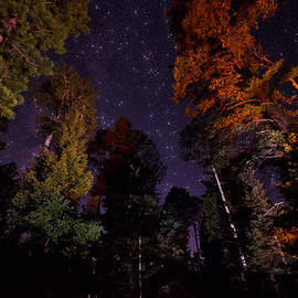 Saija  Lehtonen - Campfire Under the Stars