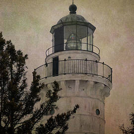 Joan Carroll - Cana Island Light