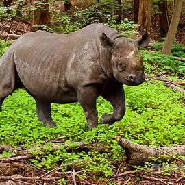 Les Palenik - Canadian boreal rhino or Rhinoceros Canadensis