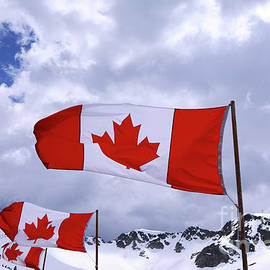 Charline Xia - Canadian Flags At Whistler