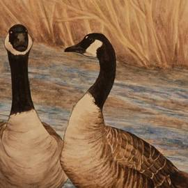 Michelle Miron-Rebbe - Canadian Geese