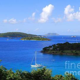 Catherine Sherman - Caneel Bay in St. John in the U. S. Virgin Islands