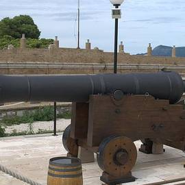 George Katechis  - cannon of the old fort Corfu