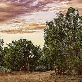 Bob and Nadine Johnston - Canyon De Chelly Campground Navajo Nation