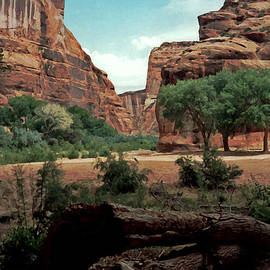 Connie Fox - Canyon de Chelly National Monument 1993