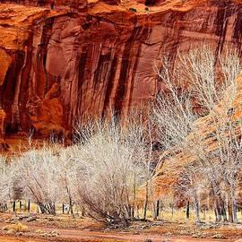 Barbara Zahno - Canyon de Chelly - Spring II