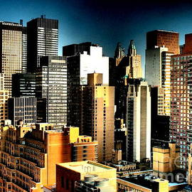 Miriam Danar - Canyonlands - New York Skyline