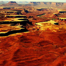 Terry Johnson - Canyonlands White Rim