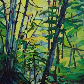Janet Ashworth - Cape Breton Woodland