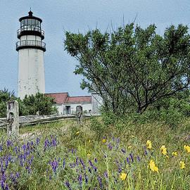 John Haldane - Cape Cod Lighthouse