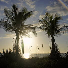 Laurie Perry - Captiva Island