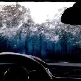Michele Mule - Car Wash