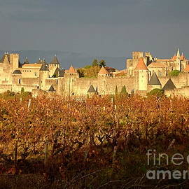 Carcassonne in Fall
