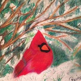 Renee Michelle Wenker - Cardinal in the Snowy Pines