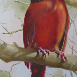Phyllis Beiser - Cardinal Perched