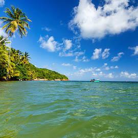 Jess Kraft - Caribbean Coast View