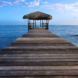Mary Lee Dereske - Caribbean Dock