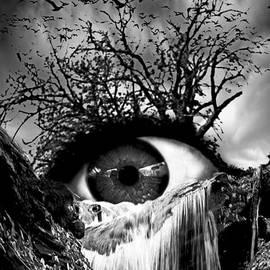Marian Voicu - Cascade Crying Eye grayscale