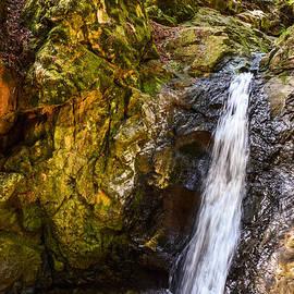 Brian Tada - Cascade Falls