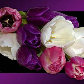 Phyllis Denton - Cascading Tulips