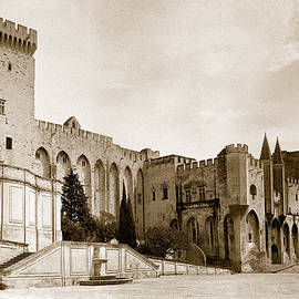 Weston Westmoreland - Castle-Palace of the Pope in Avignon France