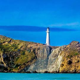 Teodora Motateanu - Castlepoint New Zealand