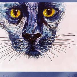 Hartmut Jager - Cat Blue