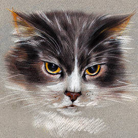 Daliana Pacuraru - Cat Portrait Yellow Eyes