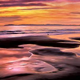 Michael Pickett - Catalina Sunset
