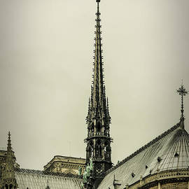 Marco Oliveira - Cathedral of Notre Dame de Paris II