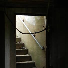 Marcia Lee Jones - Cautionary Stairs