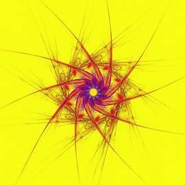 Bruce Nutting - Celestian Pinwheel