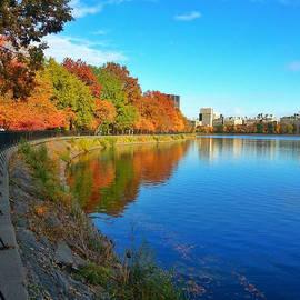 Charlie Cliques - Central Park Autumn Landscape