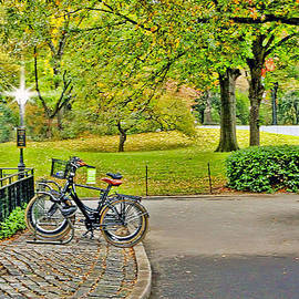 Geraldine Scull   - Central Park bike stand trail