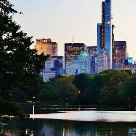 David Lobos - Central Park Reflection