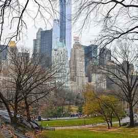 RicardMN Photography - Central Park South buildings from Central Park