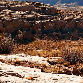 Tim Richards - Chaco Canyon