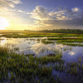 Douglas Berry - Charleston - Coastal Marsh
