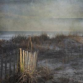 Evie Carrier - Charleston Wild Dunes Beach
