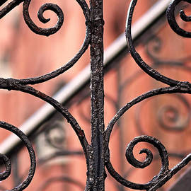 Rona Black - Chelsea Wrought Iron Abstract