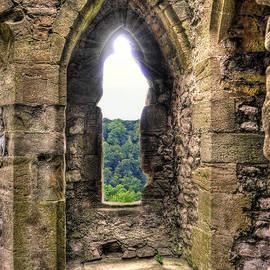Skye Ryan-Evans - Chepstow Castle View II