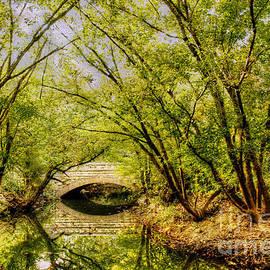 Darren Fisher - Cherokee Park