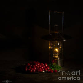 Torbjorn Swenelius - Cherries in the night
