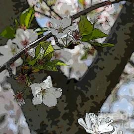 Terry Weaver - Cherry Blossom Digital