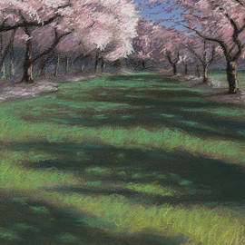 Christopher Reid - Cherry Blossoms