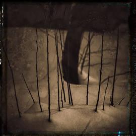 Attila Simon - Cherry memories