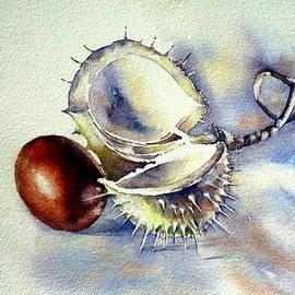 Thomas Habermann - Chestnut 1