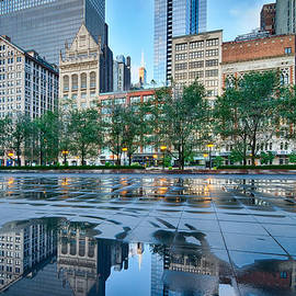Lindley Johnson - Chicago - City Reflections in Millennium Park